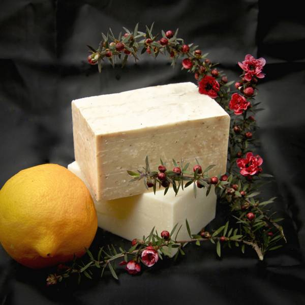 Olive & Ash Olive Oil, Lemon Myrtle, Manuka & Tea Tree Soap